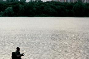 В Борисовских прудах вода недостаточно чистая, но рыбаков это не останавливает