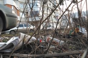 Борьба со стихийной мусорной свалкой пока безрезультатна