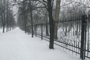 Забор вокруг парка