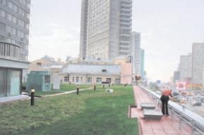 Московские крыши простаивают без дела