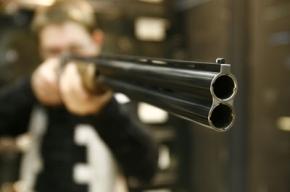 МВД намерено ввести обязательное обучение и экзамены для тех, кто покупает травматическое оружие