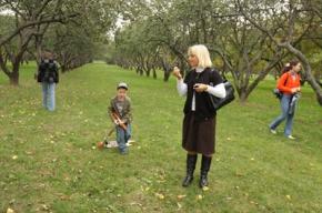 Яблочный город