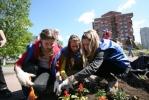 Фоторепортаж: «На Заневском проспекте посадили 10 тысяч цветов»