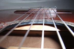 В Петербурге пройдет гитарный фестиваль