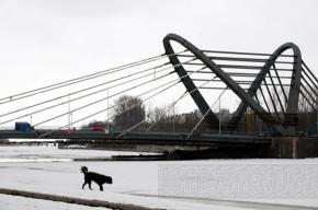 Состоялось открытие Лазаревского моста