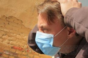 «Свиной грипп» могут «завезти» в Петербург во время экономического форума