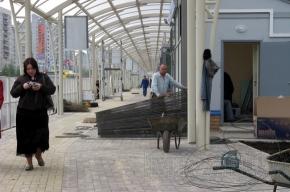 У метро «Проспект Просвещения» откроют крытую пешеходную дорогу