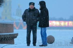 Пятьсот петербуржцев завербуют в дружинники