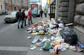 Уборка мусора: у семи нянек двор без глазу