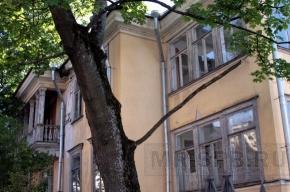 В доме Вуича в Пушкине появится музей Льва Толстого