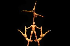 Канадский цирк проводит в Петербурге набор в свою труппу