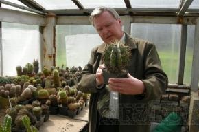 Петербургский клуб кактусистов празднует юбилей