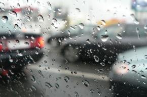 В Петербурге сегодня холодно и дождливо