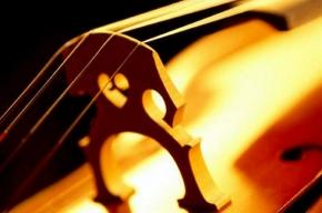 В капелле  сегодня откроется «Белая ночь романтической музыки»