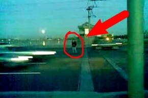 В интернете выложили видео со сбитым в Петербурге пешеходом