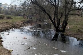 На речке Новой утки проиграли мусору