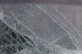 Двое хулиганов побили машины в Сестрорецке