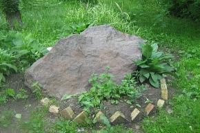 Камень во дворе дома на Черной речке – в честь «блокадной музы»