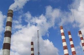 В Сланцах появится цементный завод