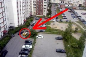 Вонючий контейнер во дворе на Приморском проспекте ни обойти, ни объехать