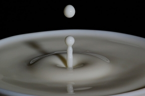 Молоко – последняя капля?