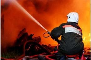 За выходные в Петербурге произошло 38 пожаров