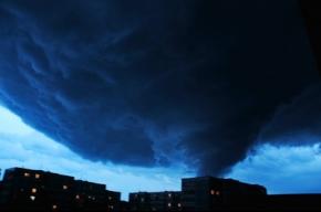 В ночь на четверг в Подмосковье бушевал ураган