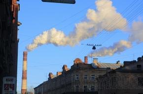 Состояние окружающей среды все реже удовлетворяет россиян