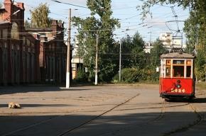 Что будет с трамвайным парком на Среднем проспекте?