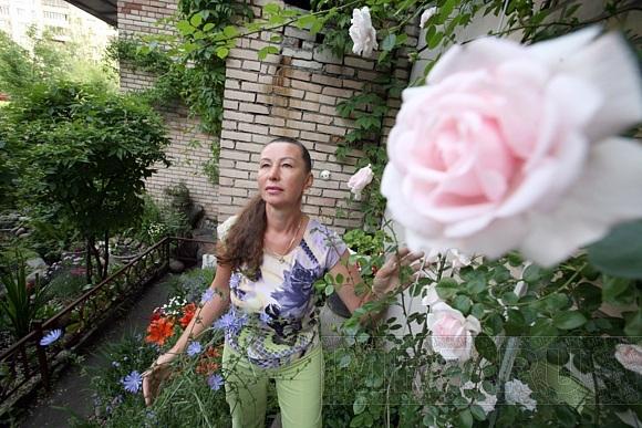 Уникальный сад во дворе на улице Олеко Дундича могут перекопать: Фото