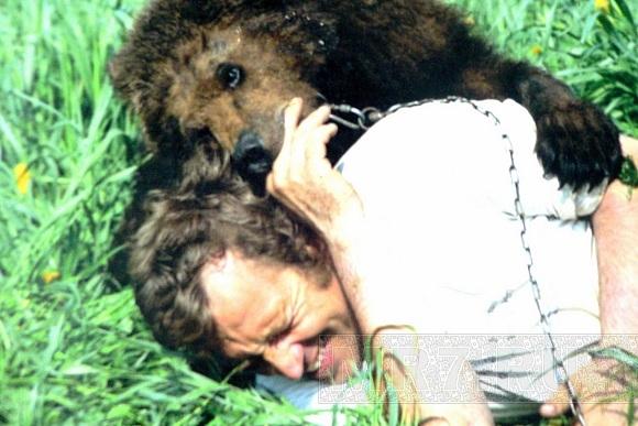 В Ям-Ижоре живут, как соседи, кони, люди и медведи: Фото