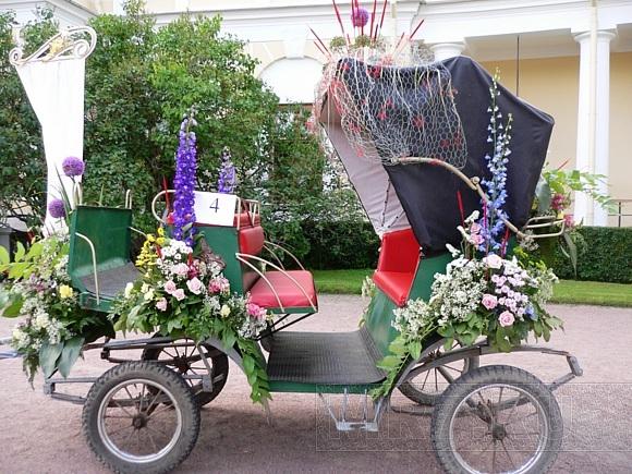 Павловск в выходные утонул в цветах: Фото