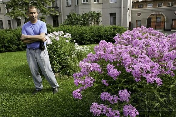В Тургеневском переулке есть ромашковый рай: Фото