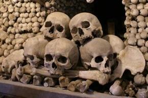 В подвале в центре Москвы нашли останки людей