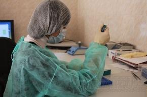 В России свиным гриппом болеют уже 18 человек