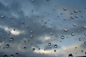 В Петербурге сегодня будет и дождь, и солнце