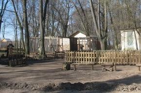 На Елагином острове - необычный зоопарк