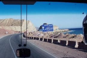 В Египте туристический автобус попал в ДТП