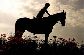 Где покататься на лошадях