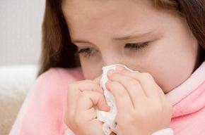 Из-за свиного гриппа могут закрыть школы