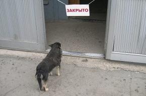 Азартных мест в Выборгском районе не обнаружено
