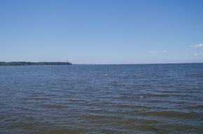 В Финском заливе с мели сняли катер