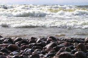 Вечером в Финском заливе будет шторм