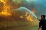 Лесные пожары в Греции приняли масштаб катастрофы: Фоторепортаж