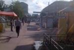 На проспекте Елизарова невыносимо воняет помойкой: Фоторепортаж