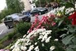 Благоухающий двор на проспекте Художников - дело рук супругов Седы и Эдуарда: Фоторепортаж