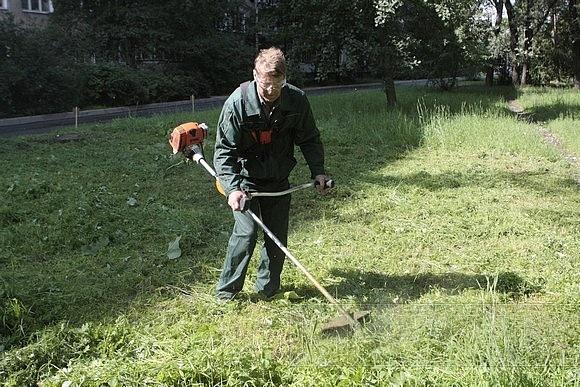 Лучшие газонокосильщики показали свои таланты: Фото