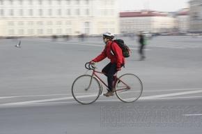 Во Фрунзенском и Московском районах появятся велодорожки