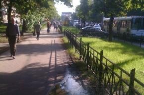 На проспекте Елизарова невыносимо воняет помойкой