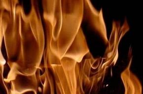 На Большеохтинском проспекте сгорела сауна
